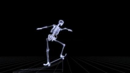 skeleten